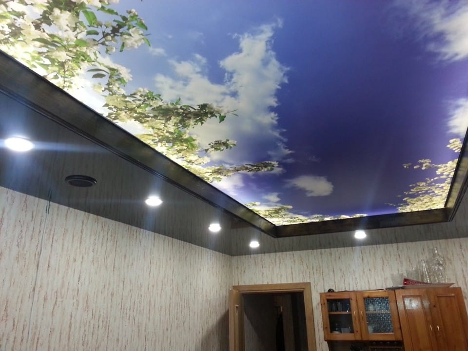 Натяжные потолки компании Premier